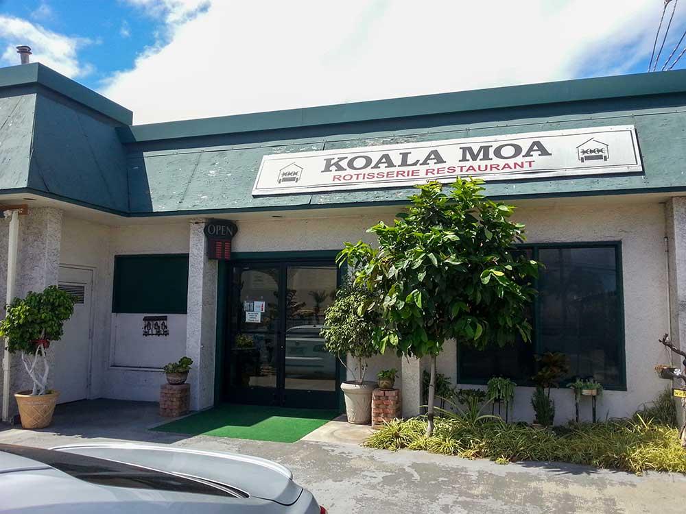 Koala Moa